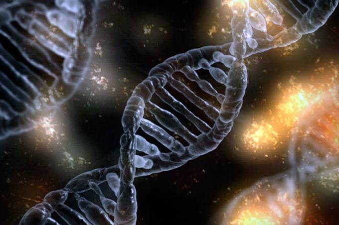 ADN_2