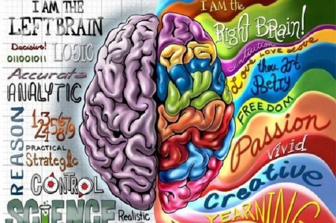 Cerebro-e-ideologías-Hemisferios-Cerebrales-principal