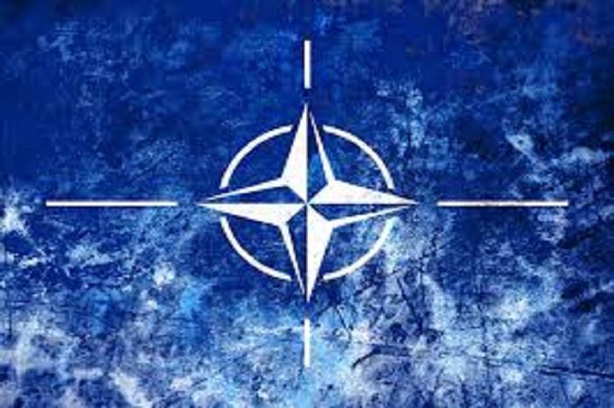 OTAN-Stay-Behind-Principal