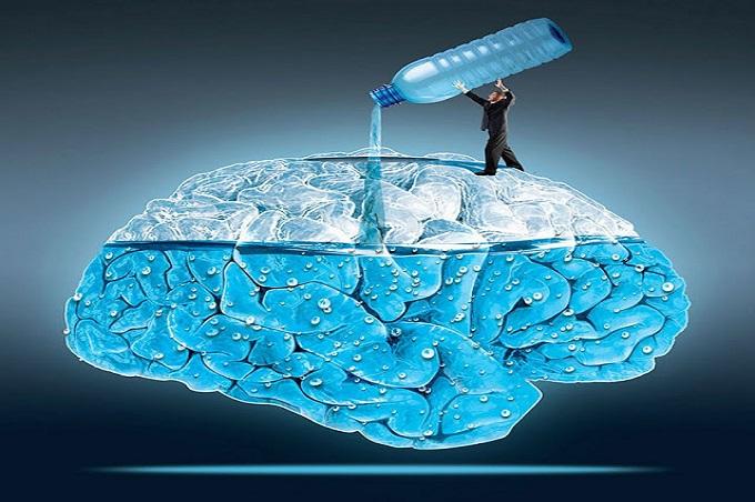 cerebro ahogado- Meyssan